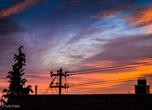IMG_4443-lightroom-1-2